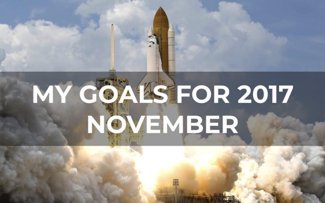 My Goals For 2017 – November