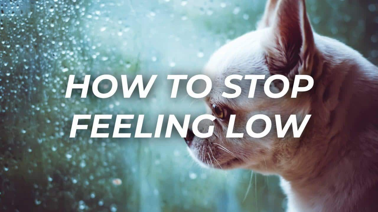 How To Stop Feeling Low 1