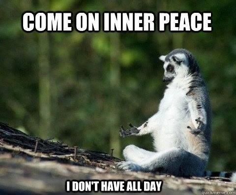 Mindfulness Tips For People In A Hurry Mindfulness Meme